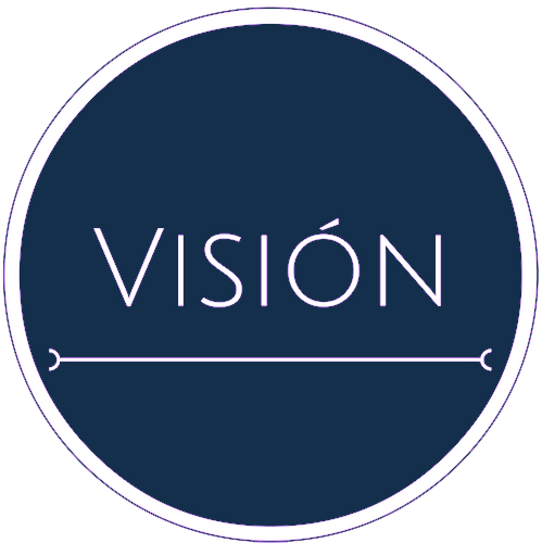 vision-new